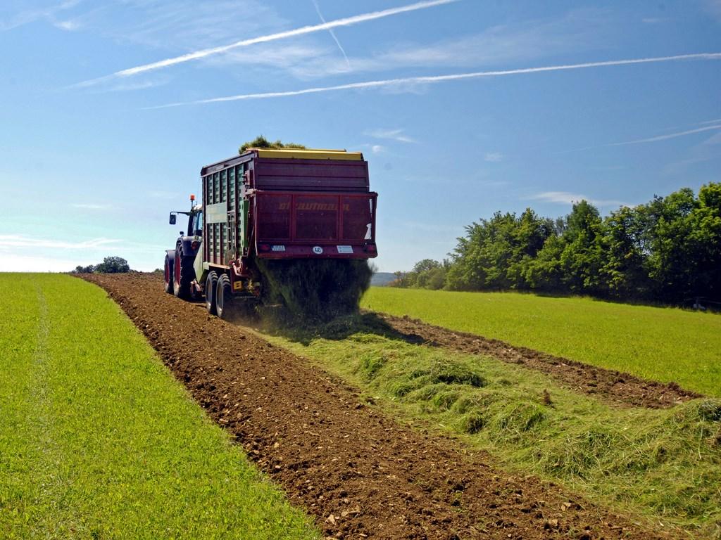 epandage de l'herbe a semences