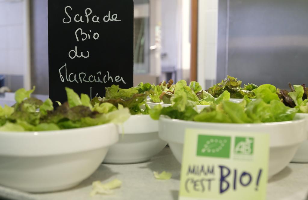salade bio du maraicher